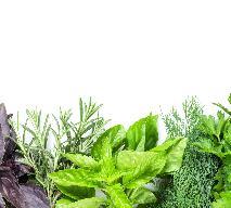 Świeże zioła w kuchni - które do mięsa, które do deserów?