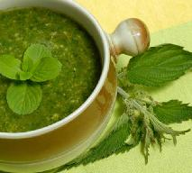 Wiosenna zupa z pokrzywy