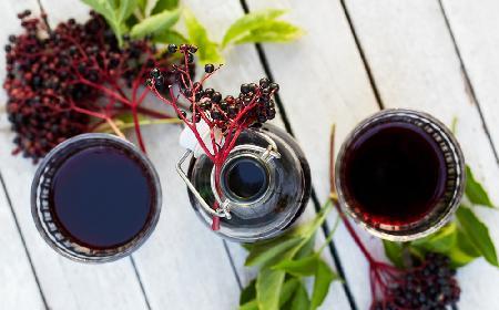 Przepis na sok z owoców bzu czarnego